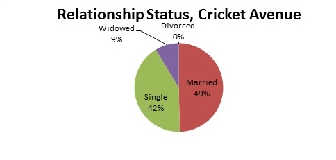 Cricket_Avenue._Relationship_Status._shortened.jpg