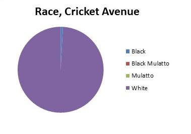 Cricket_Avenue._Race._shortened.jpg