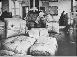 Workers in American Friends Service<br/>Committee Warehouse, London ca. 1919<br/><small>Quaker Relief in Europe, 1914-1922,<br/>Friends Historical Library of Swarthmore College</small>