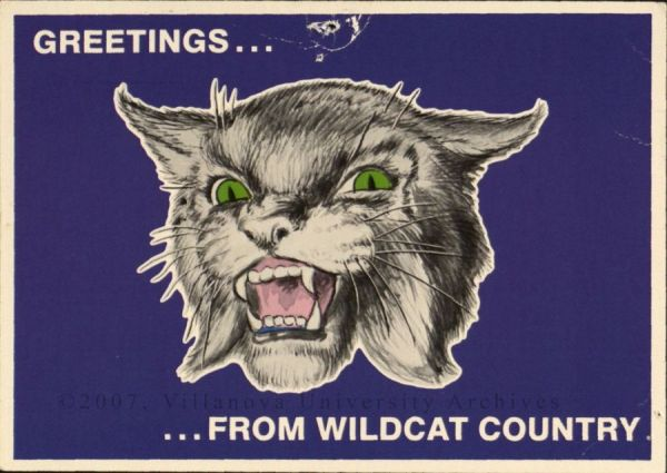 Postcard. Greetings…From Wildcat Country. (Courtesy of the University Archives)