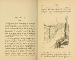 The Famous Cities of Ireland (1915) by Stephen Lucius Gwynn.