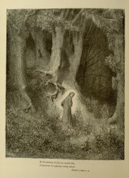 "Dor_dark_wood_of_sin.jpg<br/><span style=""font-size: 70%;"">'In the midway of this our mortal life/ I found me in a gloomy wood, astray.' Inf. I. 1-2. 'Source: Dante Alighieri, Henry Francis Cary, and Gustave Doré. Inferno. New Edition. New York. P.F. Collier, limited, 1883. Falvey Memorial Library. Special Collections.</span>"